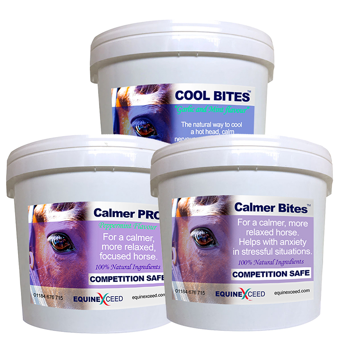 Economy Calming Bundle - Equine Exceed Calming